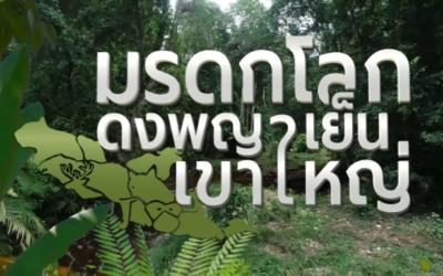 โครงการผลิตสื่อเผยแพร่เพื่อการเรียนรู้ เข้าใจ เข้าถึงธรรมชาติในผืนป่ามรดกโลกดงพญาเย็น-เขาใหญ่ผู้รับทุนประเภทเปิดรับทั่วไป ประจำปี 2562